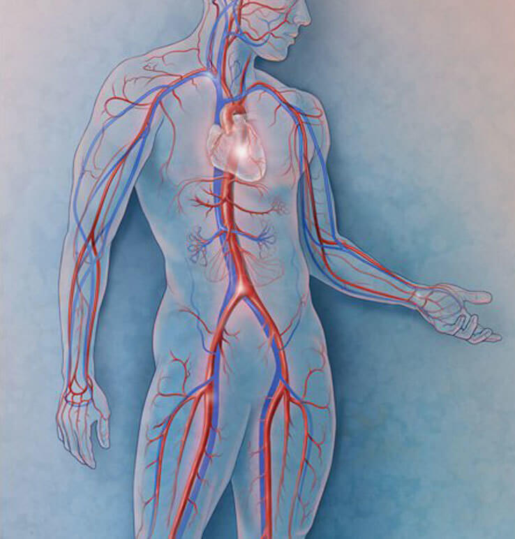 Точки на теле, которые спасут от сердечной боли