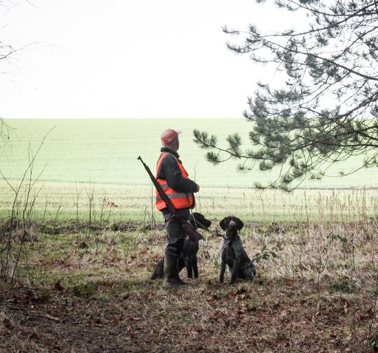 Ошибки начинающих охотников