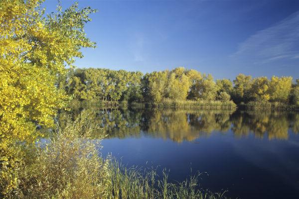 Муниципальные чиновники «подарили» озеро Сладкое под Новосибирском Казахстану