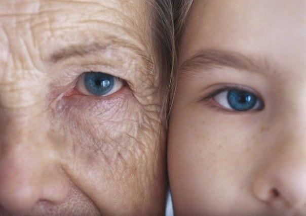 Бабушка и внучка…