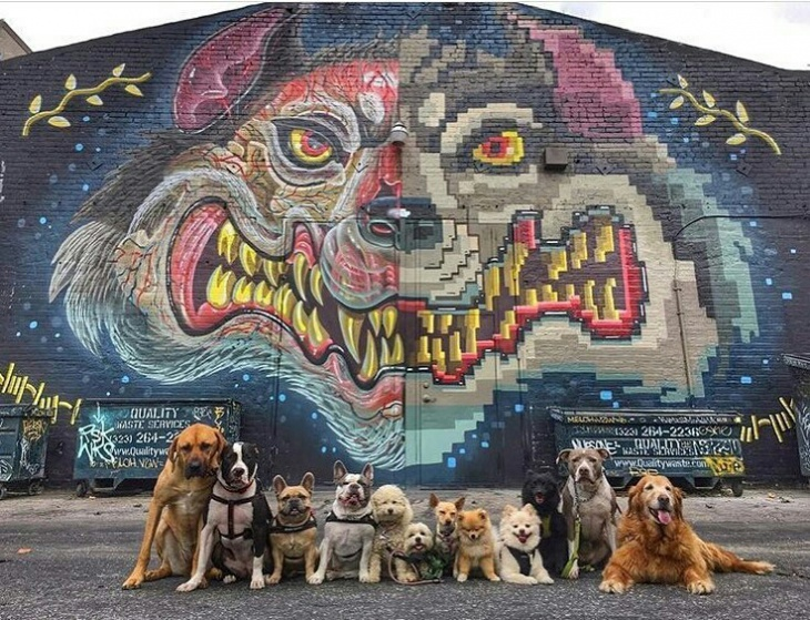 Крутая фотка и графитти