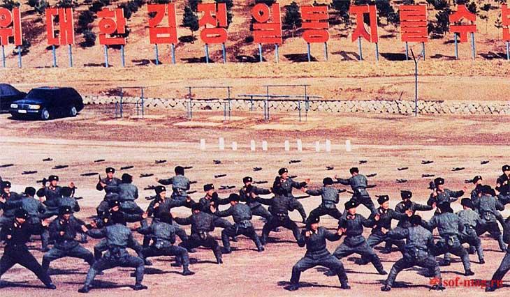 Операция спецназа КНДР по ликвидации президента Южной Кореи