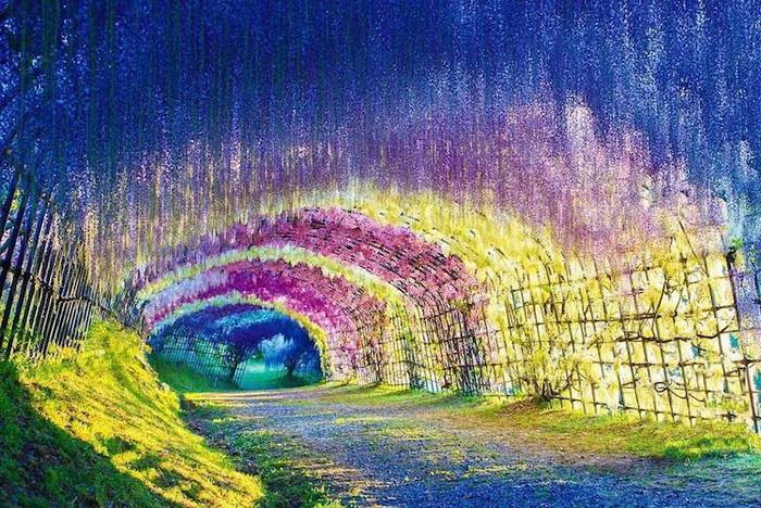 Природные тоннели: обзор самых красивых туристических мест на планете