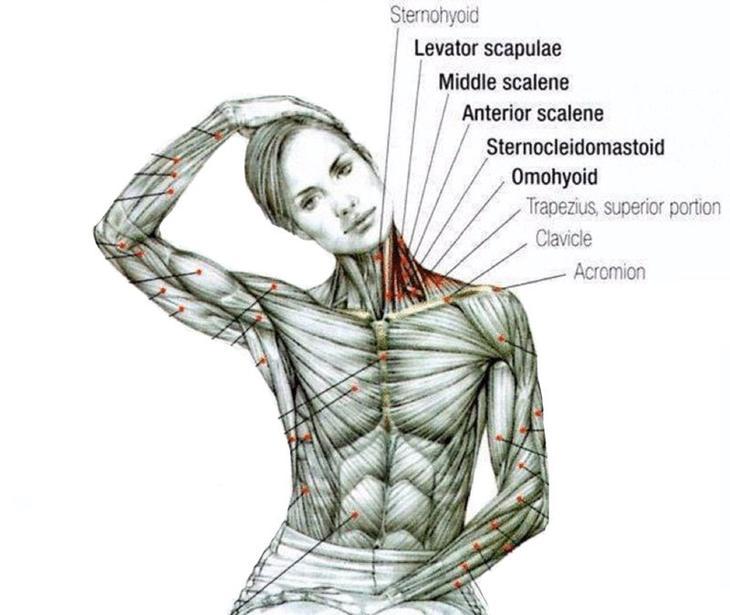 6 омолаживающих упражнений для шеи