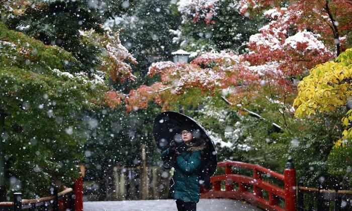 Последний разв Японии был снег в ноябре в далеком 1962 году