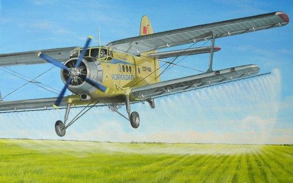 """10 интересных фактов о """"кукурузнике"""" - легенде советской авиации"""