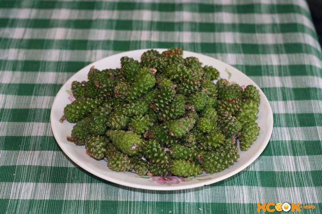 зеленые сосновые шишки