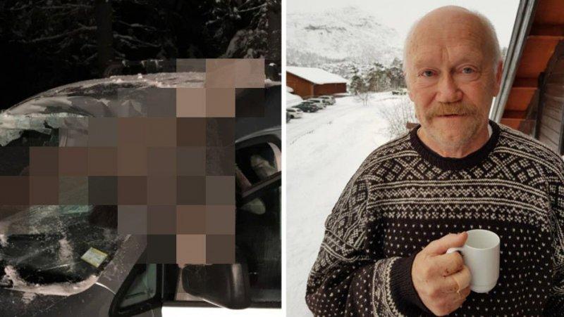 В Норвегии лось влетел в салон автомобиля