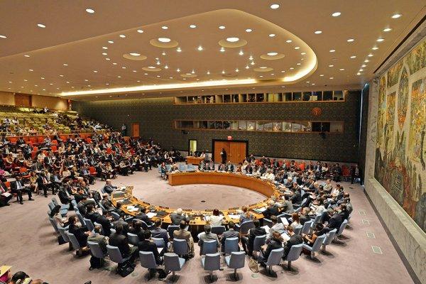 РФ наложила вето на проект резолюции Японии о продлении мандата СМР