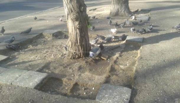 ВОдессе неизвестные похищают старинные плиты излавы Везувия
