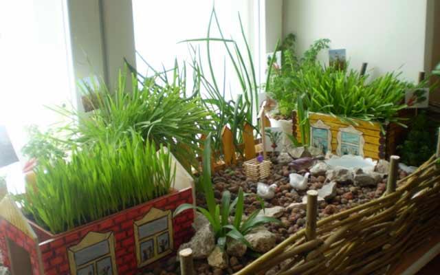 plants1216-12.jpg