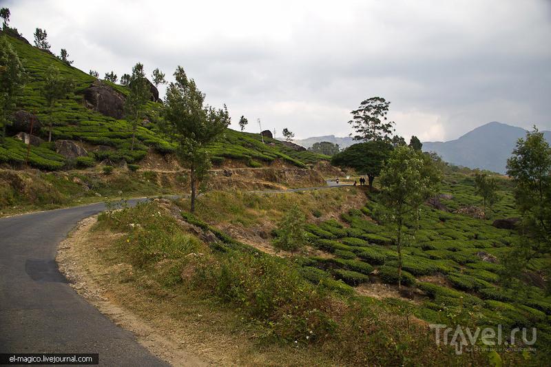 Дорога из Варкалы до Муннара…