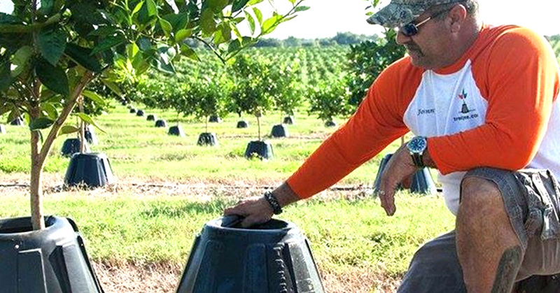 Фермер с 15-летним стажем делится секретом необычайного успеха урожаев