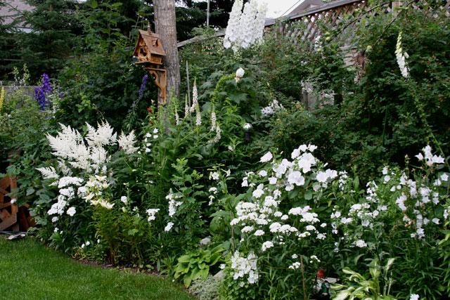 Жизнь в одном цвете: создаем белый сад