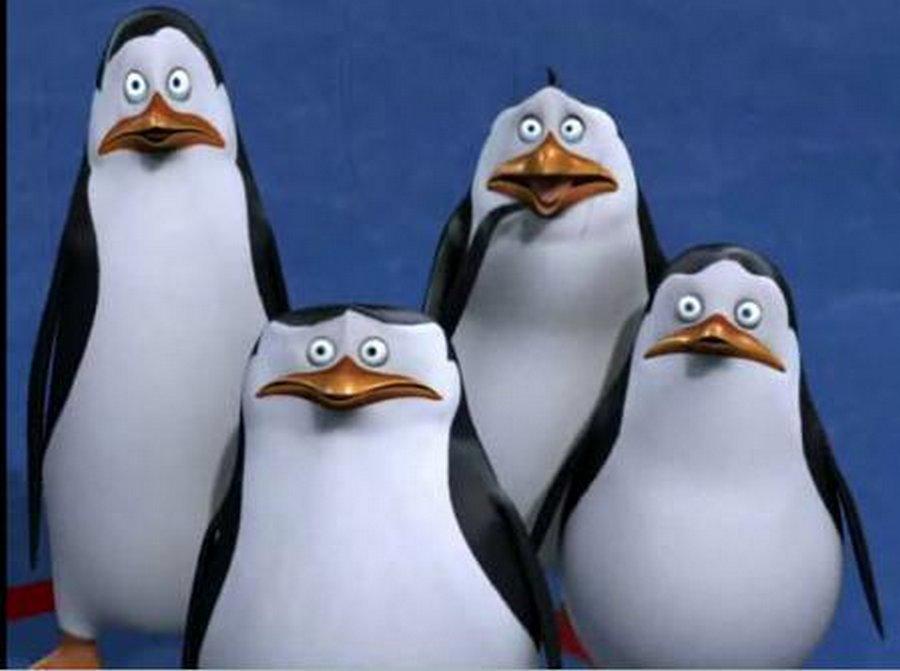 Пингвиньи яйца не хотите ли?!