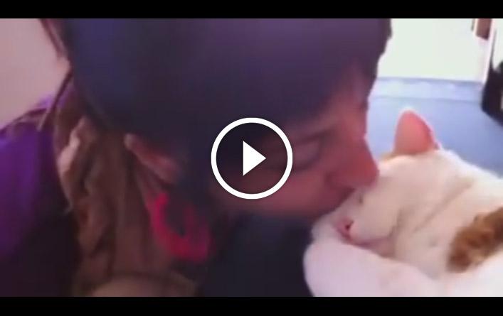 Реакция кота на поцелуй