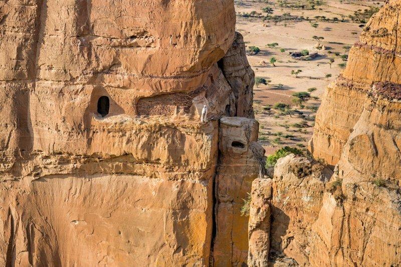 Абуна Йемата в мире, жизнь, интересно, удивительно, церковь, эфиопия