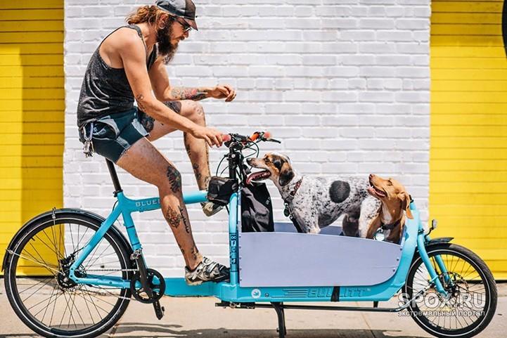 """Колоритные велосипедисты Нью-Йорка и их """"железные кони"""""""