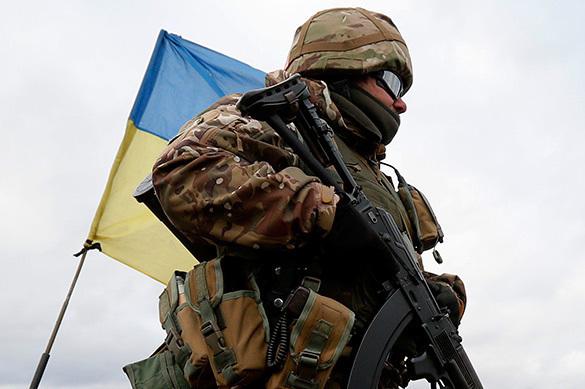 Владимир ОЛЕЙНИК: силой объединить Украину невозможно