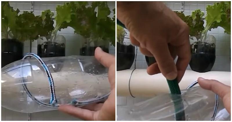 Полезная вещь для участка: надо всего лишь поместить верёвку в пластиковую бутылку