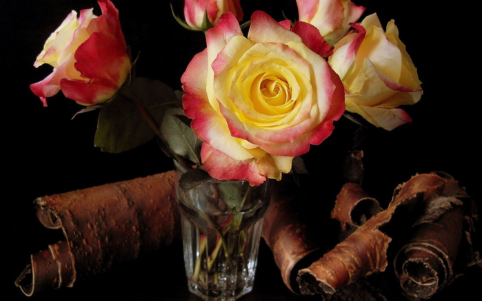 Nature___Flowers_Roses_in_a_glass_082404_16 (700x437, 265Kb)