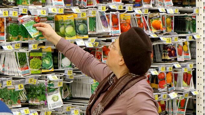 Иду я в магазин семян со списком будущих посадок