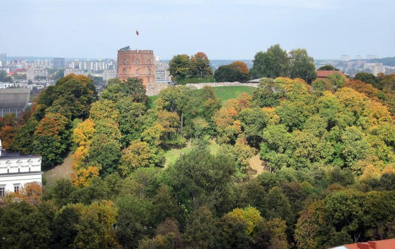 А если серьезно, мне кажется с деревьями было лучше Вильнюс, башня Гедиминаса, литва