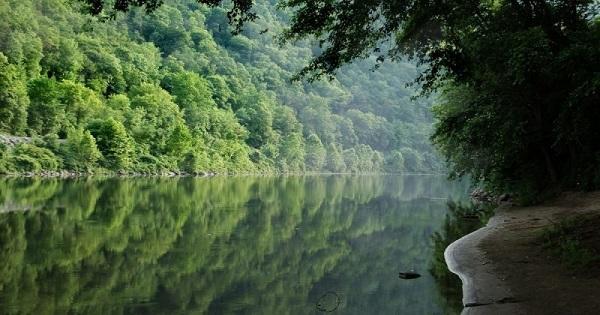 В штате Нью-Джерси из-под воды слышится пение