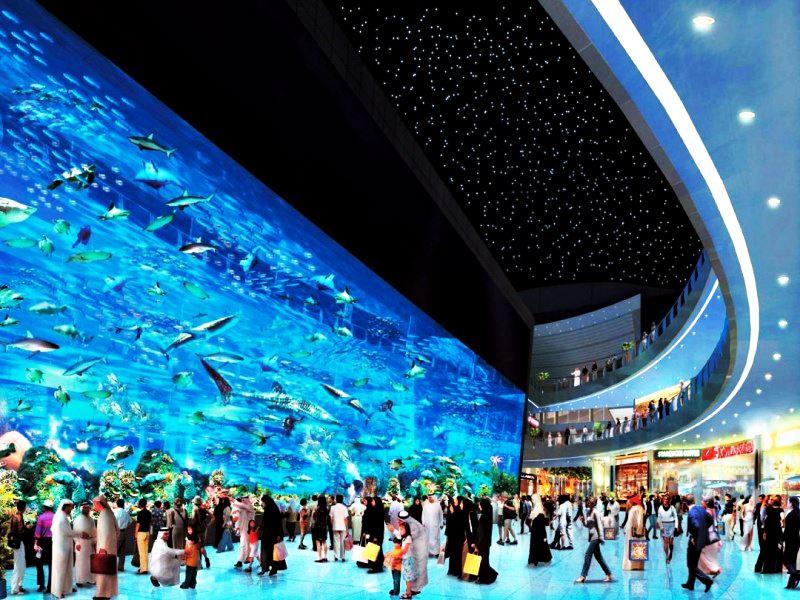 Океанариум Дубая ОАЭ. Океаны в миниатюре. Самые известные и крутые океанариумы мира. Фото с сайта NewPix.ru