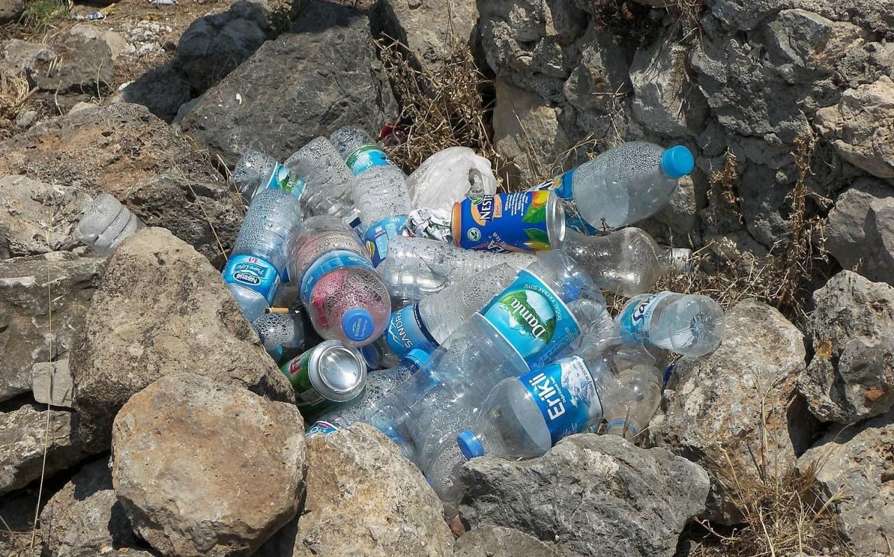 Вот почему нельзя повторно использовать пластиковую бутылку для воды, даже если вы ее помыли. Жуть!