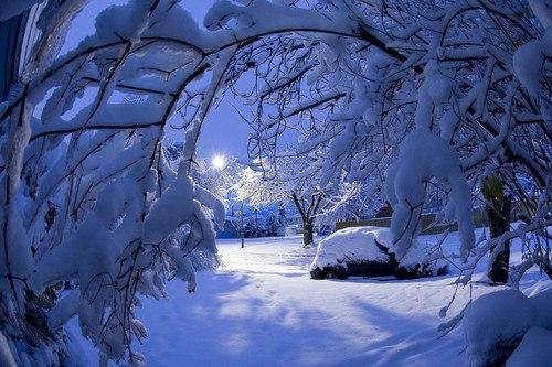 Притча о дружбе: Два соседа и снег