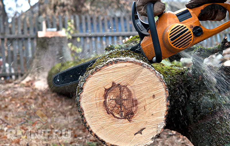 Спил деревьев своими руками