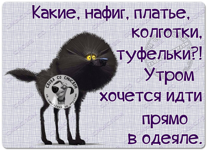 http://mtdata.ru/u1/photo497C/20848754824-0/original.jpg#20848754824