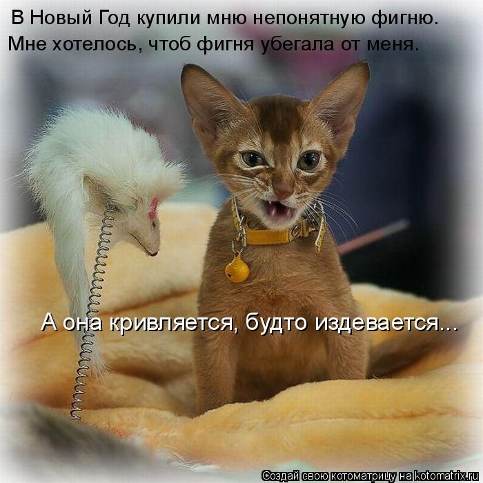 http://mtdata.ru/u1/photo4980/20464304246-0/original.jpg