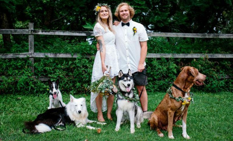 Когда у оператора лапки: пара поручила своему псу снимать свадьбу