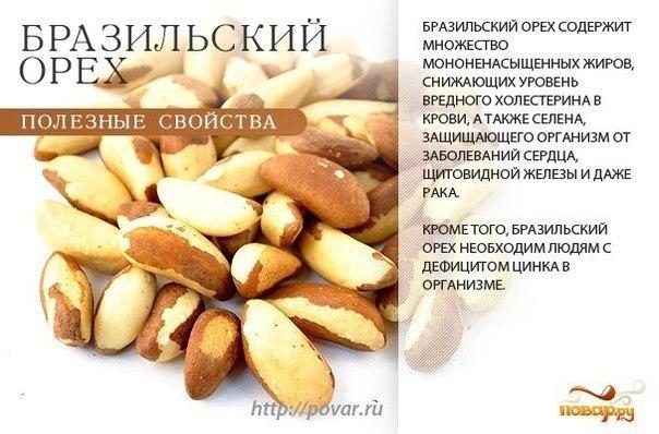 смешные факты про кедровый орех потенция хорошо