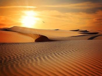 Геологи нашли в иранской пустыне остатки внеземной материи