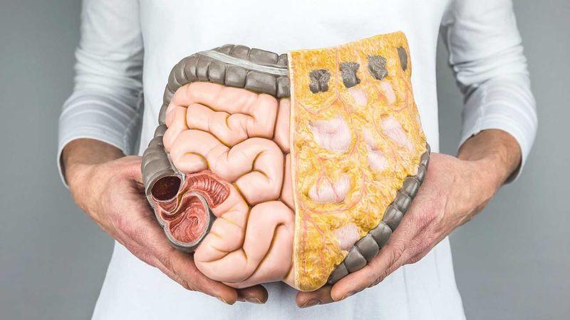 Чистка кишечника дома: действенные народные способы привести свое тело в норму
