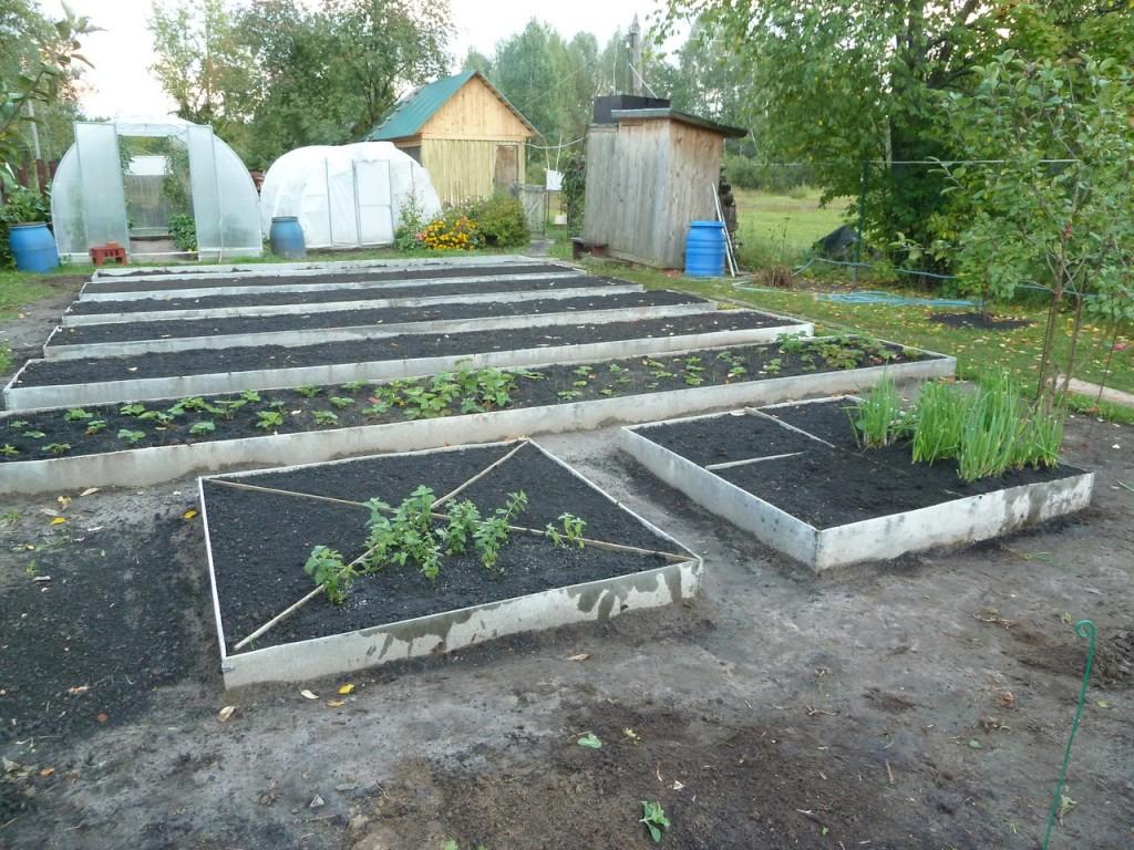 Новые грядки на огороде
