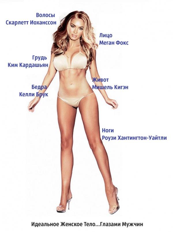 Вот как должна выглядеть идеальная женская фигура