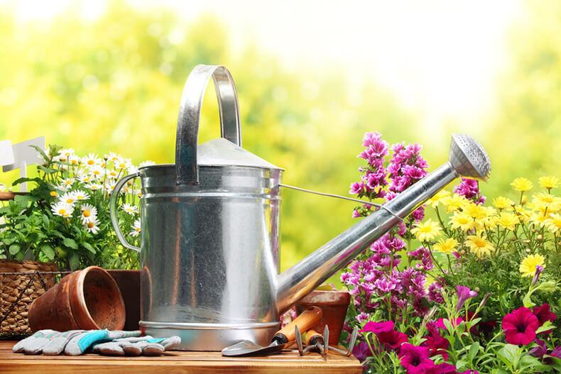 «Вредные» советы огородникам и садоводам