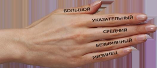 Значение пальцев на руках....