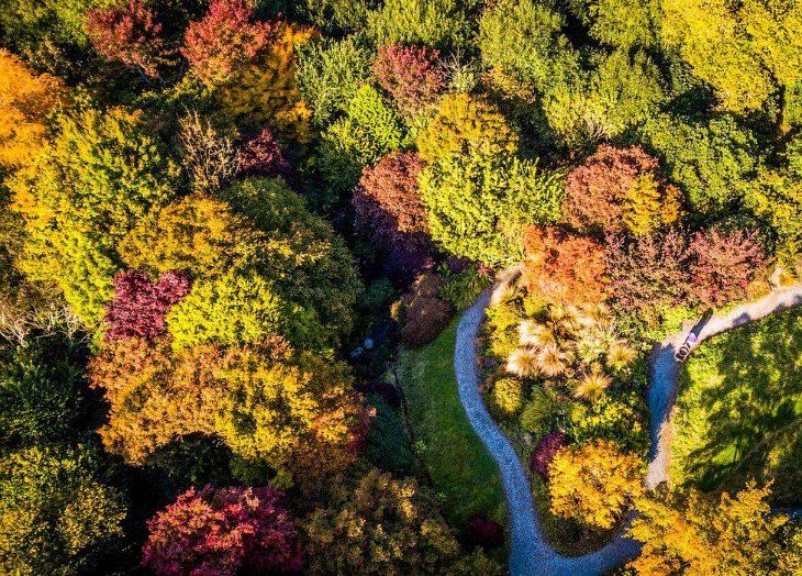 Осенние краски Туманного Альбиона