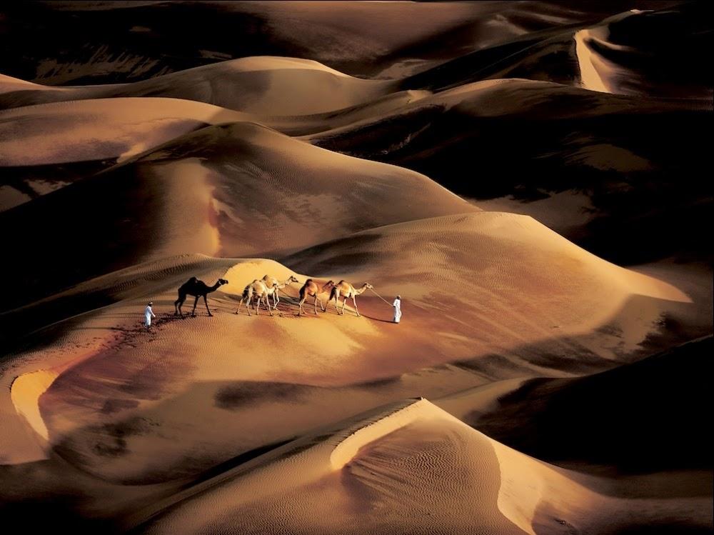 Лучшее от фотографов National Geographic