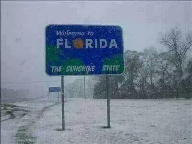 Флорида — солнечный штат зима, мир, снег, юмор