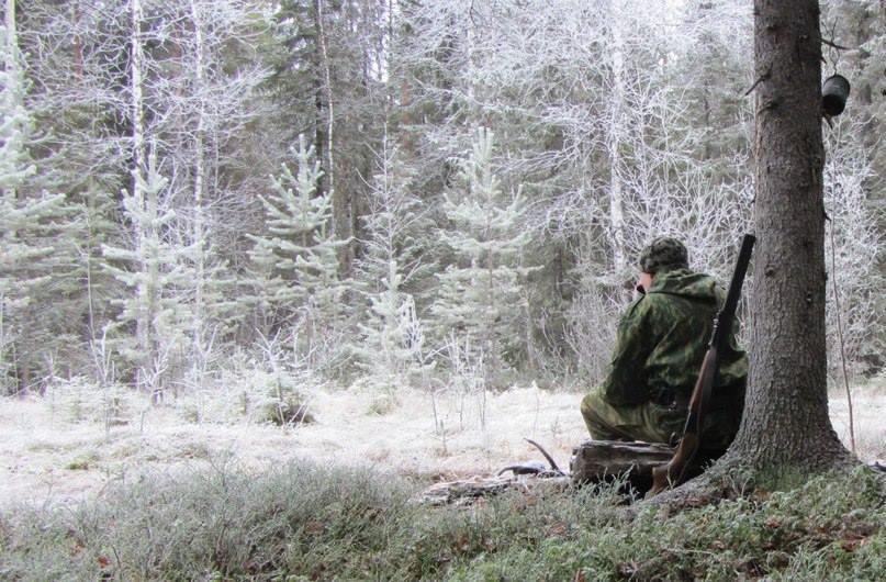 Я люблю тебя, охотник
