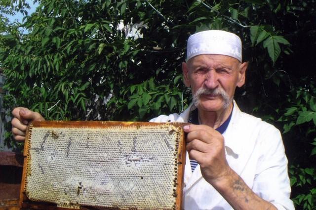 Пчелиные хитрости или Как выбрать правильный мед