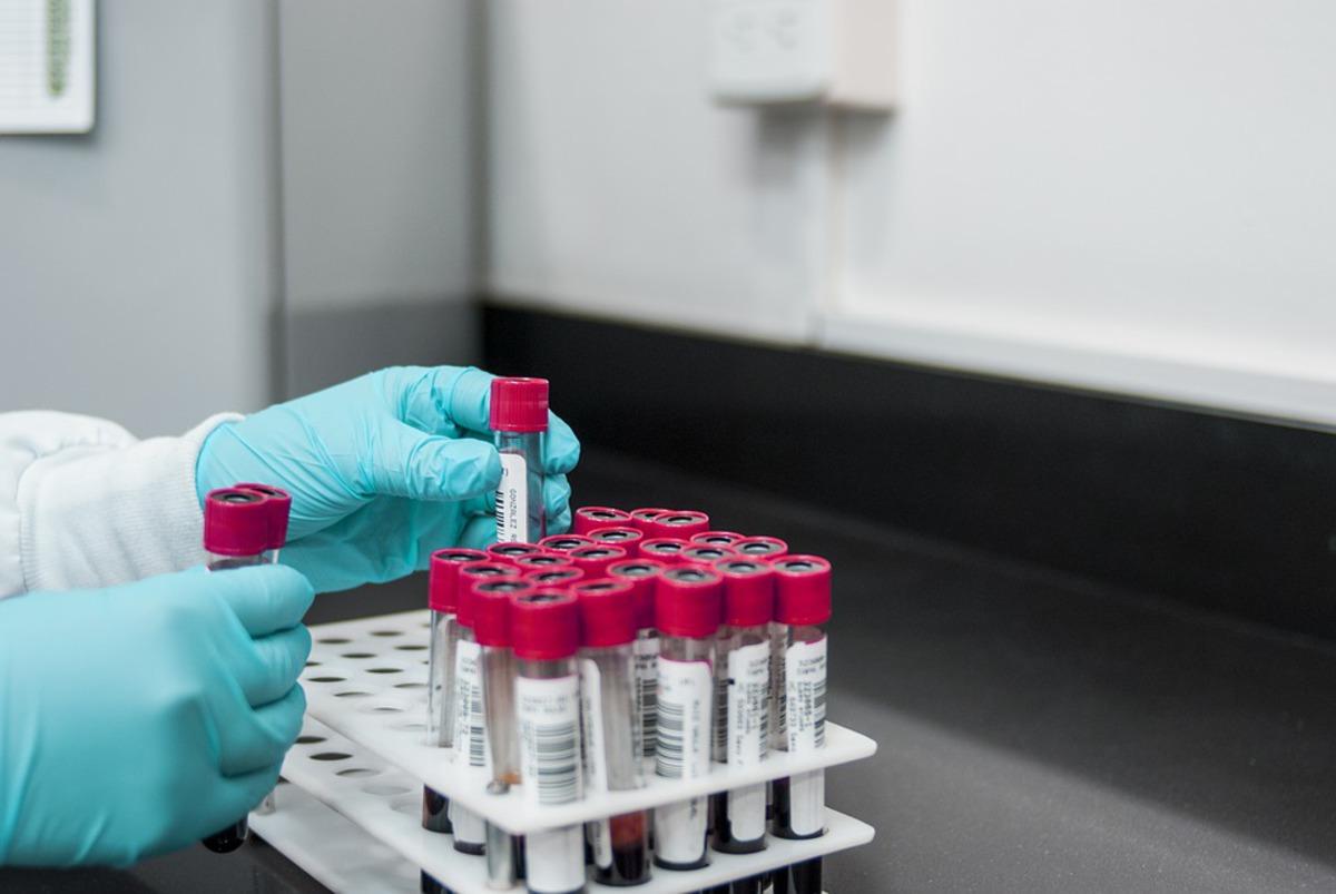 В США создают универсальную кровь для донорства