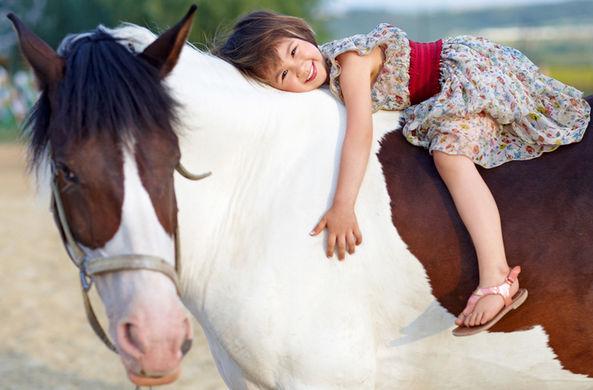 В Новой Зеландии трехлетняя девочка заехала в магазин за сладостями на пони