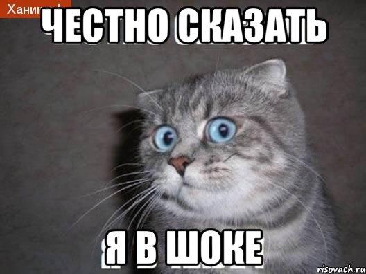 Песков прокомментировал уголовное дело против Улюкаева